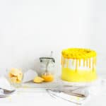 The BEST Lemon Poppy Seed Cake