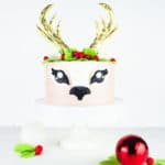This is the Christmas cake you didn't even know you needed in your life. Complete with a FREE, easy to use template for the face and antlers.