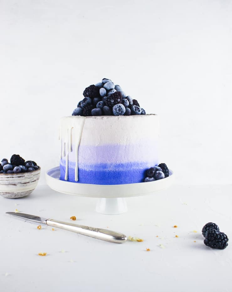 Brighten up your day with this sunny blueberry and lemon poppy seed cake! | The Simple, Sweet Life